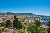 Cityscape of central Cannes and marina — Stock Photo