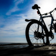 Постер, плакат: Mountain bike