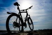 マウンテン バイク — ストック写真