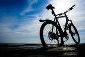 Rower górski — Zdjęcie stockowe