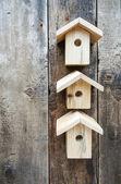 Wooden bird houses — Stock Photo