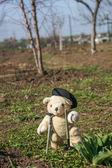 Toy in a garden — Stock Photo