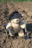 Toy bear in a garden — Stock fotografie