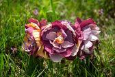 Handmade flowers in grass — Stock Photo