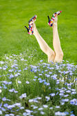 Funny sexy woman legs — Stock Photo
