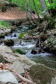 Schoonheid van de natuur — Stockfoto