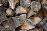 Tree, stump background — Stock Photo