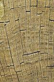 Knäckt timmer yta — Stockfoto