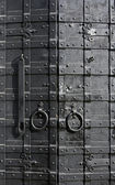 Sturdy metal door — Stock Photo