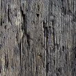 Stock Photo: Decayed timber surface