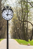 Park clock on spring alley background — Stock Photo
