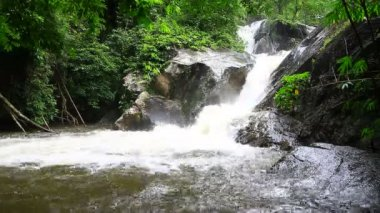 Waterfall in tropical forest — Stock Video
