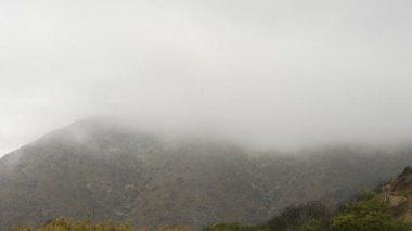 Deep Fog over coastal cliff — Stock Video