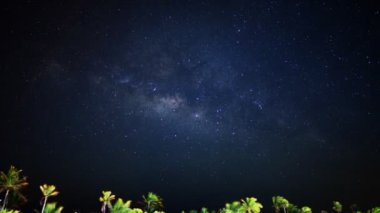 Milky way galaxy and moon rise over tropical palm jungle in Yucatan Peninsula — Stock Video