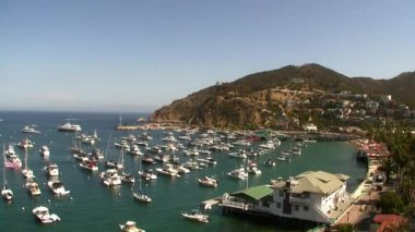 Resort Island Cove Time Lapse in Catalina Island — Stock Video