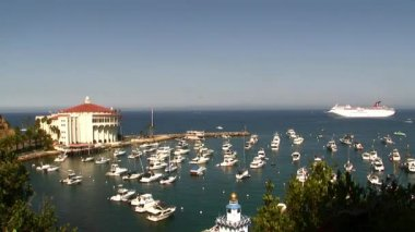 Catalina Island Casino and Yachts — Stock Video