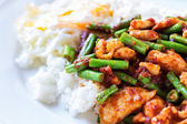 Fried stir chicken with red curry paste — Stockfoto