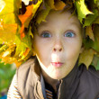 Постер, плакат: Emotional boy in a wreath from autumn leaves
