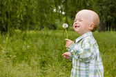 Kid with dandelion — Stock Photo