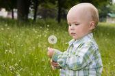 Kid with dandelion — Stockfoto