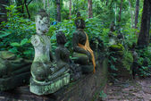 Broken statues of Buddha in a forest temple — Stock Photo