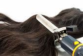Electric curling iron and hair on white background — Stock Photo