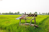 Abandoned wooden cottage — Stock Photo