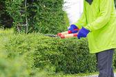 Blurred image of a man cutting green bush (motion blur image) — Stock Photo