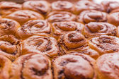 Freshly baked buns closeup in backlit — Stock Photo