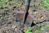 Shovel the ground — Foto de Stock