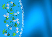 Forget-me- — Stock Photo