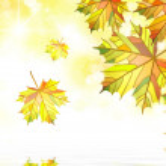 Autumn maple leafs bacground — Stock Photo #41281013