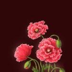 Poppy flowers, watercolor illustration — Stock Photo #41377843
