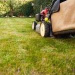 gräsklippare — Stockfoto #41561573