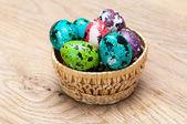 Uova colorate di Pasqua — Foto Stock
