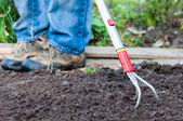 Raking the Garden — Stock Photo