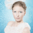 The Snow Queen. Winter frosty beautiful woman. Rime and frost background in a portrait of a girl. Winter Christmas story. Fabulous Christmas image for the legend of the winter. — Foto de Stock