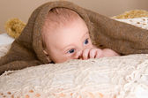 Newborn baby wrapped in  light brown soft fluffy cloth — Stock Photo
