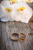 Gold wedding rings on a bouquet of white orchids — Stok fotoğraf