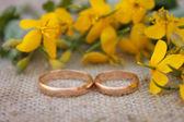 Wedding rings on the background of yellow flowers — Stockfoto