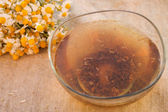 Tincture of chamomile — Stock Photo