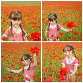 Collage girl collects poppy flowers — Stock Photo