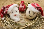 Happy eggs at Christmas — Stock Photo