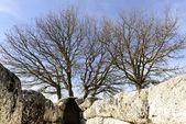 Giant tombs sardinia — Stock Photo