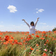 Poppies in wheat — Stock Photo #47244749