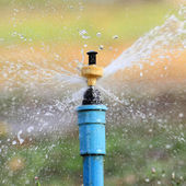 Garden irrigation system  or watering sprinkler — Photo
