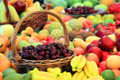 Colorful picture of various fruits — Stock Photo