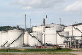 Storage oil tanks — Foto Stock