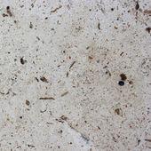 Pietra di marmo — Foto Stock