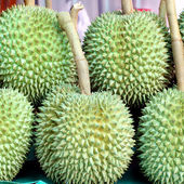 Durian fruit on market tray — Стоковое фото